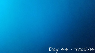 Day 44